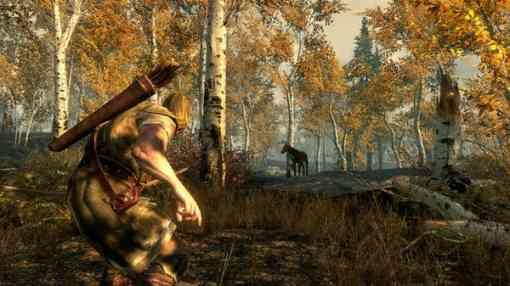 The Elder Scrolls V Skyrim juego